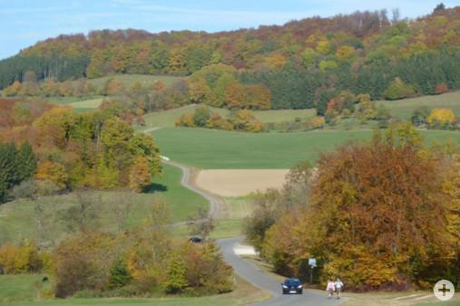 Weg nach Bärenbach (Dr. H. Zelesny)