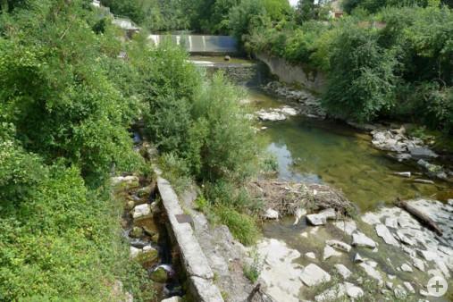 Niedrigwasser Fischtreppe (Dr. H. Zelesny)